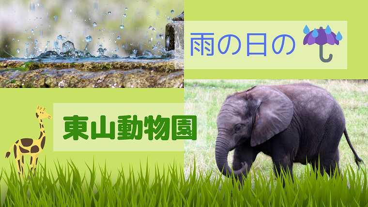 雨の日の東山動物園