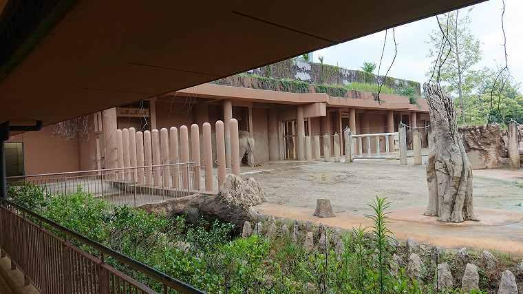 ゾウ舎からの風景