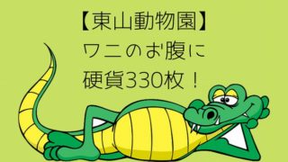 【東山動物園】 ワニのお腹に 硬貨330枚!