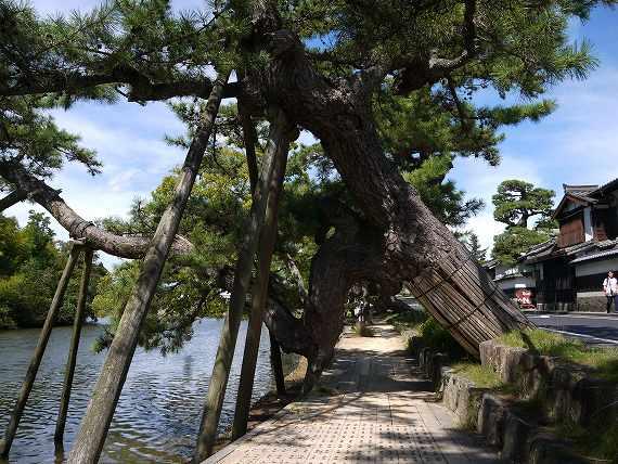 松江城周辺