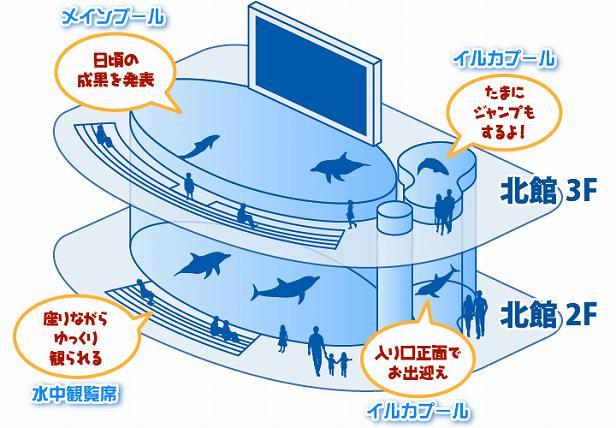 イルカのプールマップ
