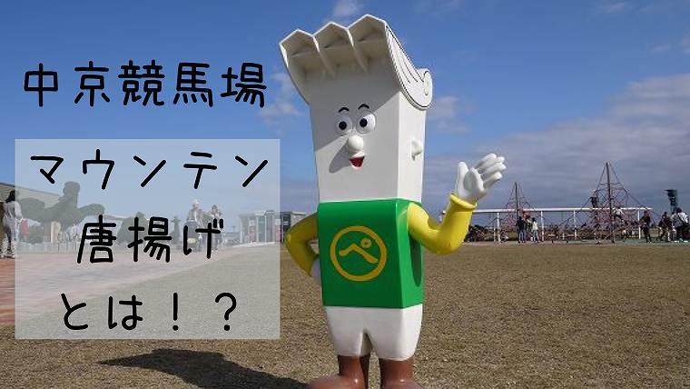 中京競馬場グルメ名物
