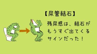 尿管結石の症状-残尿感