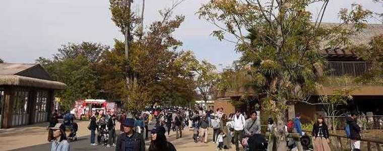 東山動物園の人の山2