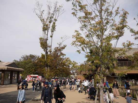 東山動物園の風景2