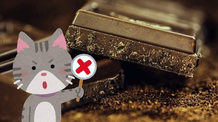 チョコレートの悪い噂