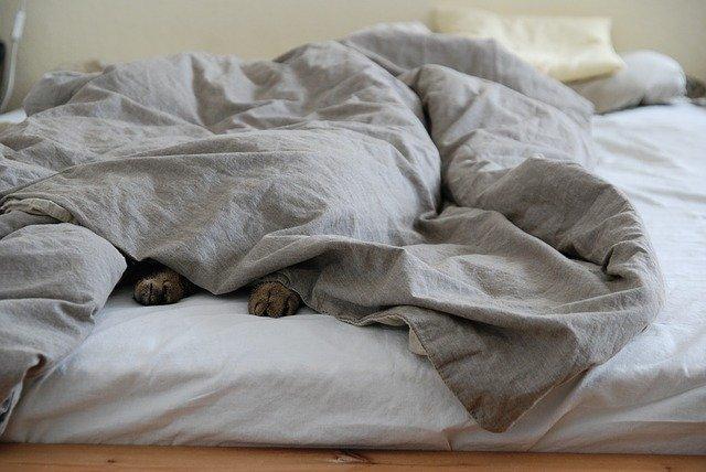 子供を布団に寝かせる
