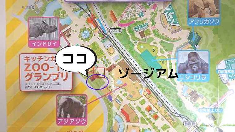 MAP-ゾージアム前の芝生広場